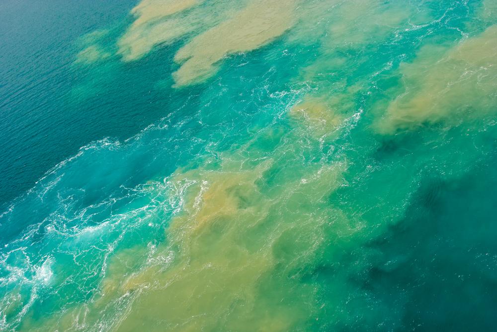 marine oil slick
