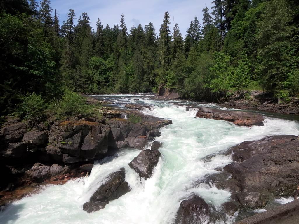 Stamp River Provincial Park by Stamp River Provincial Park by David Stanley via Flickr