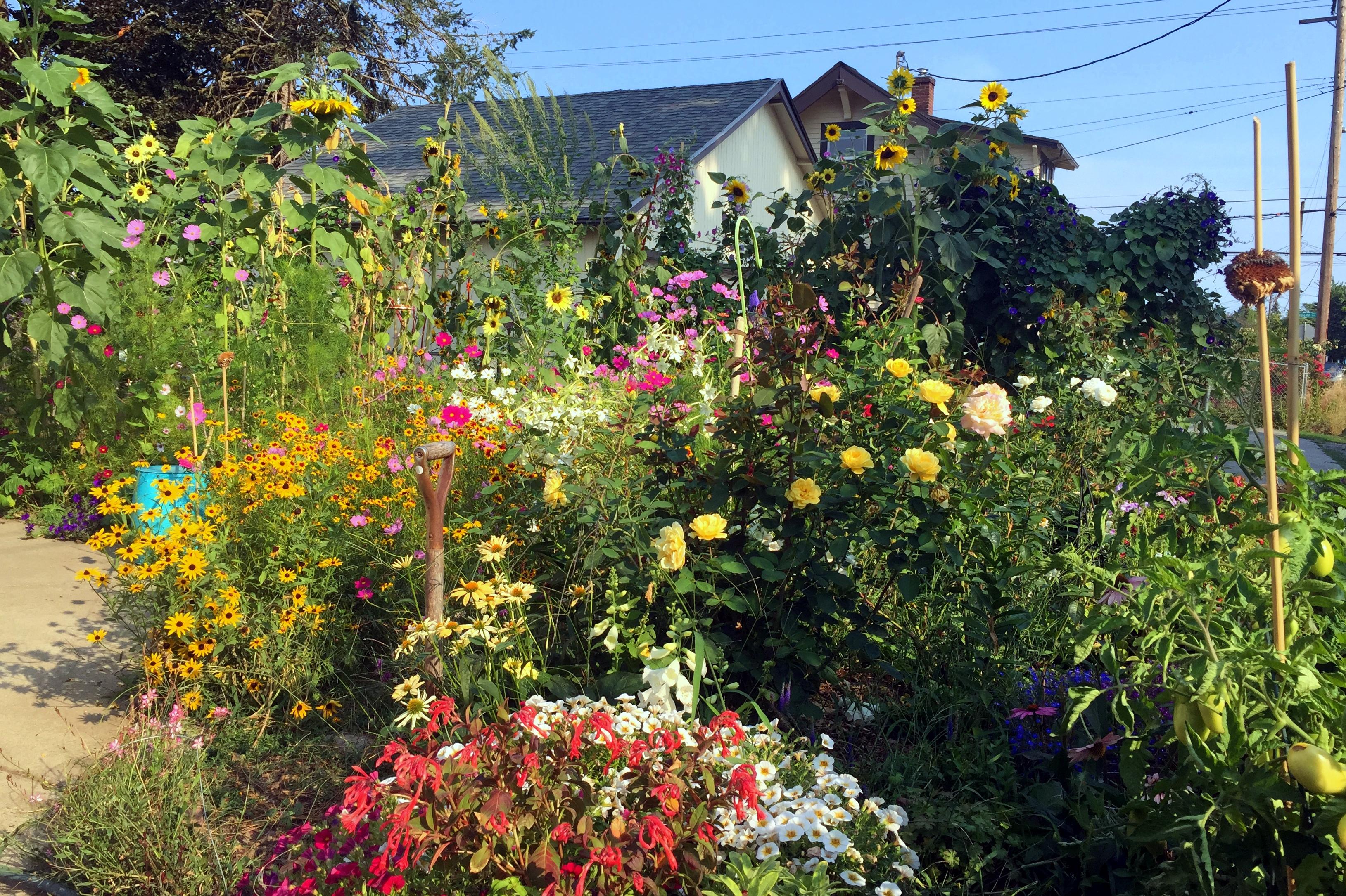 Pollinator garden Photo by Sara