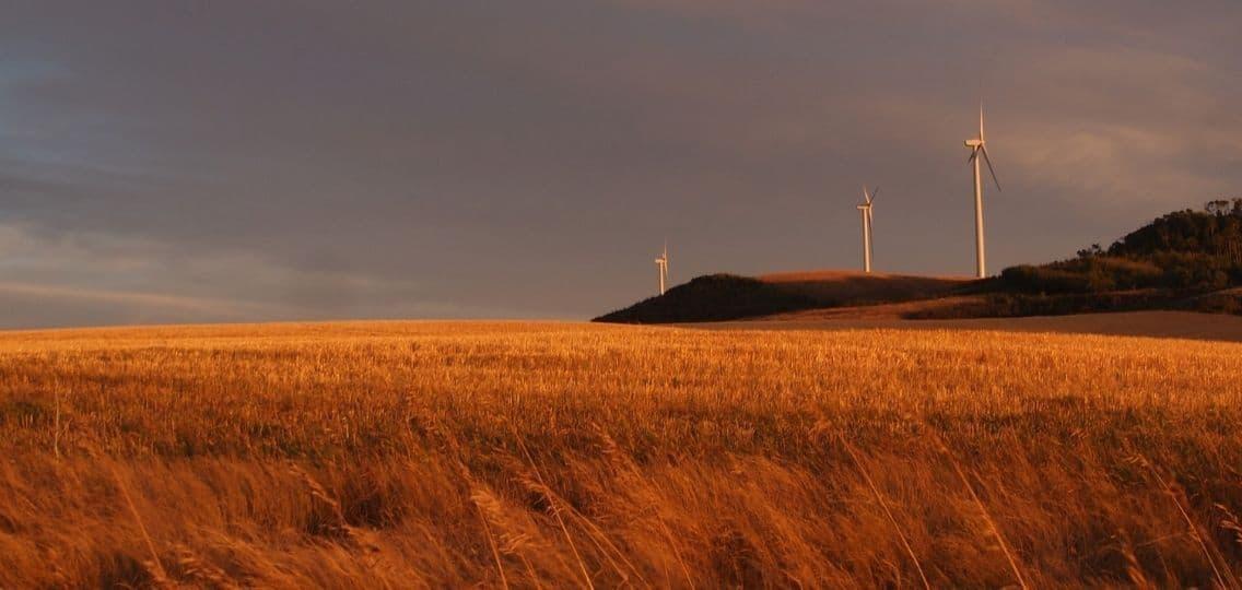 Alberta wind farm